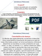 Clamidiose (Psitacose)
