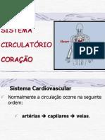 207 353sistema Circulatorio 03 - Coracao