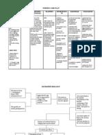 Nursing Care Plan-Herniated Nucleus Pulposus