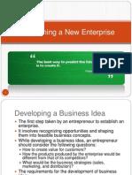 Establishing a New Enterprise
