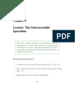 The Schwarzschild lecture490_ch9.pdf