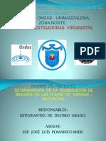 Diapositivas Proyecto Basuras en La Playa[1]