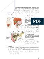 Anatomi Pankreas