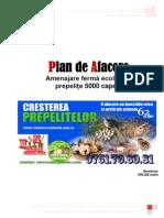 Plan Afacere 5000 Prepelite