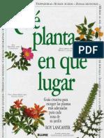 Plantas - Qué Planta en qué Lugar