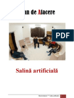 Plan Afacere Salina Artificiala