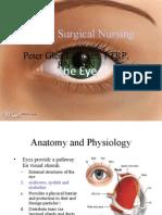 The Eye1