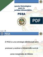 2_Presentacioon_PESA_2013-UTN
