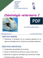 odontologaveterinariai-121009161106-phpapp02