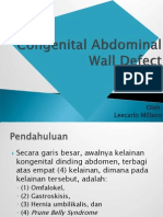Congenital Abdominal Wall Defect