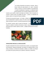 Las Frutas y Hortalizas Son Fuentes Importantes de Vitaminas (1)
