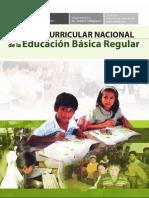DISEÑO CURRICULAR PERU 2009