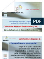 funcionamiento_caes.pdf