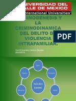 CRIMINOGÉNESIS Y CRIMINODINAMICA DEL DELITO DE VIOLENCIA INTRAFAMILIAR_Xochitl