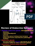 Endocrines-1