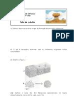 Ficha-rochas Sedimentares 2[1]
