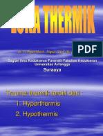 Trauma Thermik 2