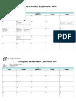 modelo Cronograma prácticas lab