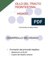 higado-101015234446-phpapp02