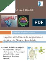Constituintes Do Sistema Imunitrio Apresentao Nr 1210672221308115 9