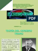 Diapositiva Rosa