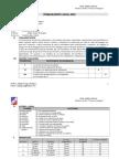 PROGRAMA ANUAL COMUNICACION 2013 4º