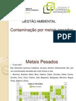 Contaminação por metais pesados - Gestão Ambiental