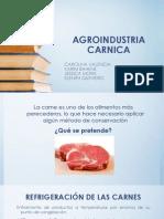 DIAPOSITIVAS CARNICOS (1)