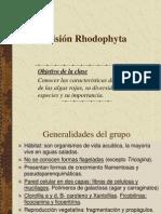 Tema 6. Las Rodófitas