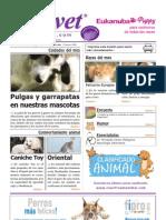 Notivet Febrero2008 Web