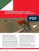 Freshwater Biodiversity a Hidden Resource Under Threat Factsheet Sp