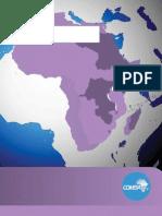 2011 COMESA Investment Report