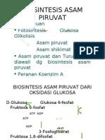Biosintesis asam Piruvat