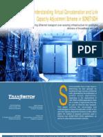 Understanding Virtual Concatenation and Link Capacity Adjustment Scheme in SONET SDH