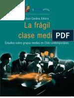 La Fragil Clase Media
