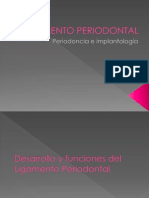131058957 Ligamento Periodontal