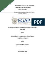 """Rubio Campos, Jesús (2006). """"El sector informal en México 1987-2006. Un Análisis de Política Pública"""". Tesis de Maestría en Administración Pública y Política Pública de la EGAP del Tecnológico de Monterrey."""