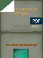 7. Shigella y Vibrio Cholerae