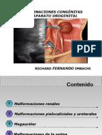 MALFORMACIONES CONGÉNITAS DEL APARATO UROGENITAL
