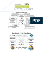 Resumen Estructura Curricular