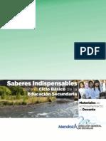 Saberes indispensables_Ciclo básico de la Educación Secundaria_2012 Copy