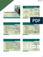 2 Organização e Estrutura - Analista.pdf