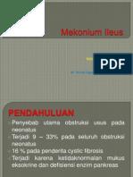 Mekonium ileus