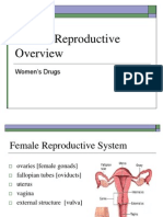 Female Reproductive Overview