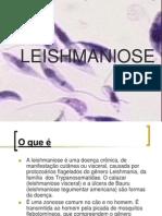 Trabalho Leishmaniose Prof Luiz Carlos Artuso Godoi