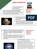 Láminas Auditoría Ambiental leylaaa.ppt