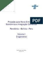 Proj Diagnostico Rondonia