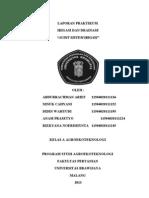 LAPORAN PRAKTIKUM AUDIT IRIGASI.doc