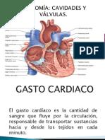 Gasto Cardiaco