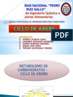 Metabolismo de Carbohidratos - Ciclo de Krebbs Final